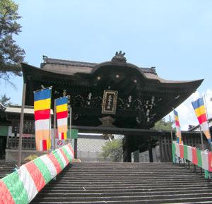 Nishiotani307299