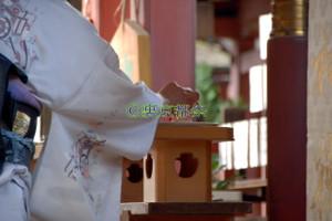 Harikuyoumatsuri_00